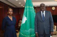 AUPSC COMMENDS SUDAN EFFORTS ON PEACE , TRANSITION