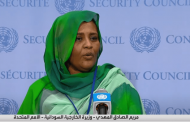 Sudan, Egypt say second filling of GERD poses existential threat to 150 million people